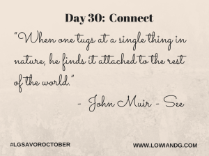 Day 30_ Connect