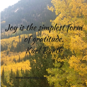 Joy is the simplest form of gratitude.Karl Barth