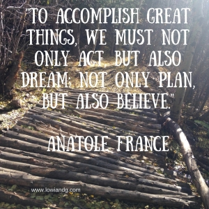 To accomplish great things, we must not only act, but also dream; not only plan, but also believe. Anatole France