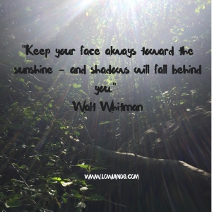 keep-your-face-always-toward-the-sunshine-and-shadows-will-fall-behind-you-walt-whitman