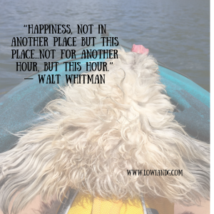 happiness-not-in-another-place-but-this-place-not-for-another-hour-but-this-hour-%e2%80%95-walt-whitman