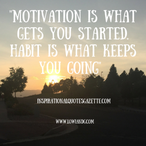 %22motivation-is-what-gets-you-started-habit-is-what-keeps-you-going%22